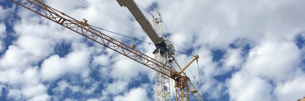 cropped-beauty-crane.png
